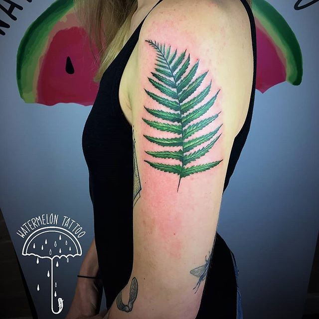 Fresh shot of a fern tattoo by Noemi at Watermelon Tattoo.